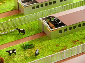 Mini-farm on the layout is shown in section with a heater